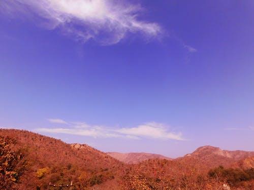 Ảnh lưu trữ miễn phí về bầu trời, cây, chân trời, đồi núi