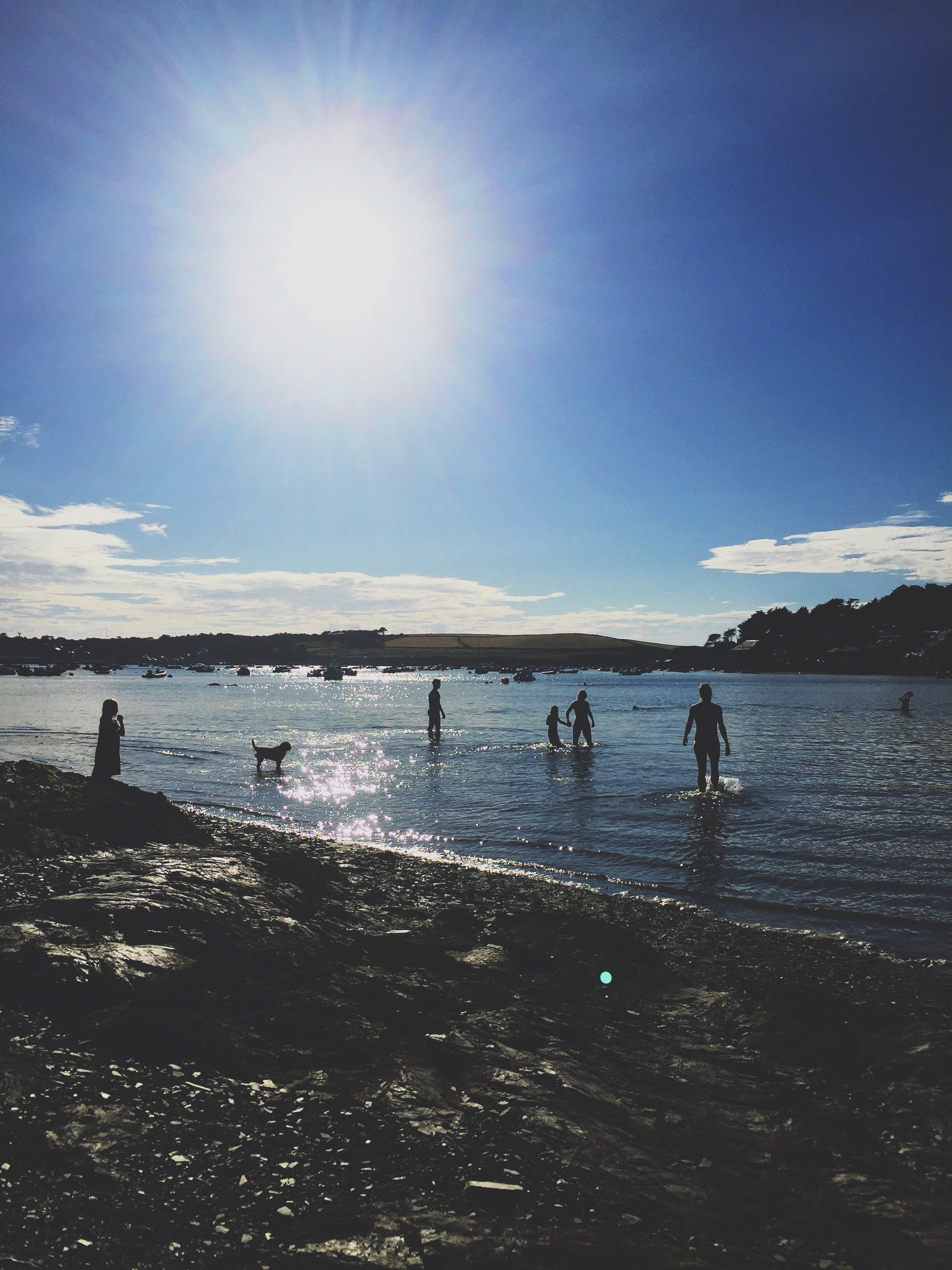 Základová fotografie zdarma na téma denní světlo, lehký, lidé, moře