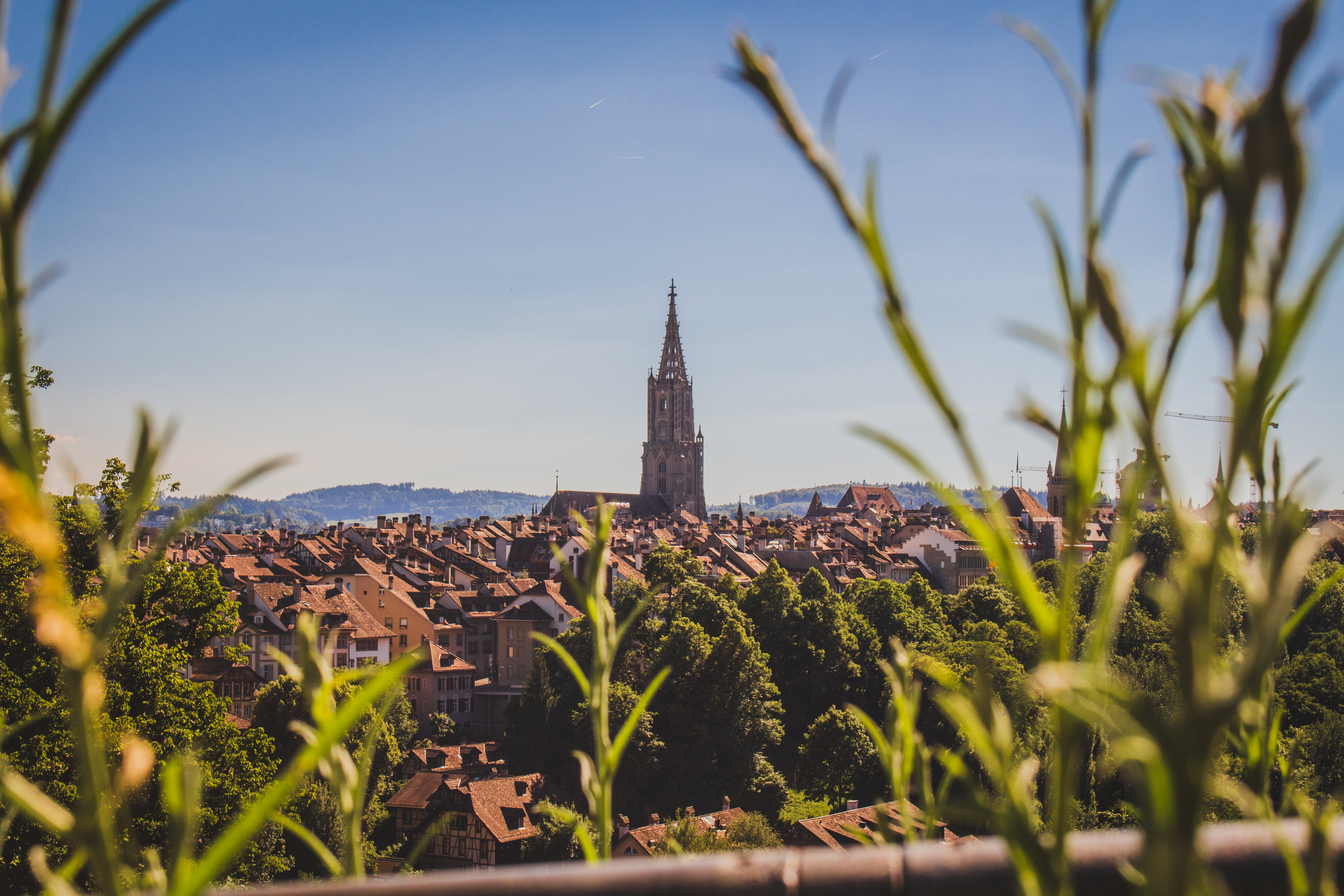 Free stock photo of architect, architecture, bern, cathedral