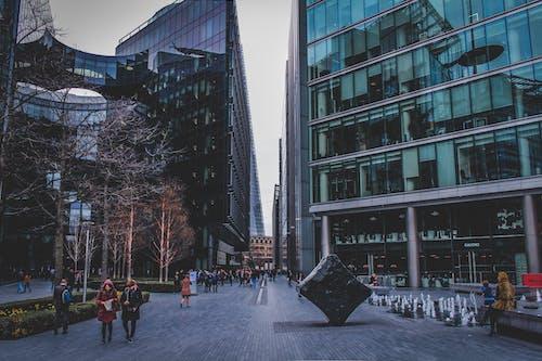 Foto d'estoc gratuïta de alt, arbres, carrer, ciutat
