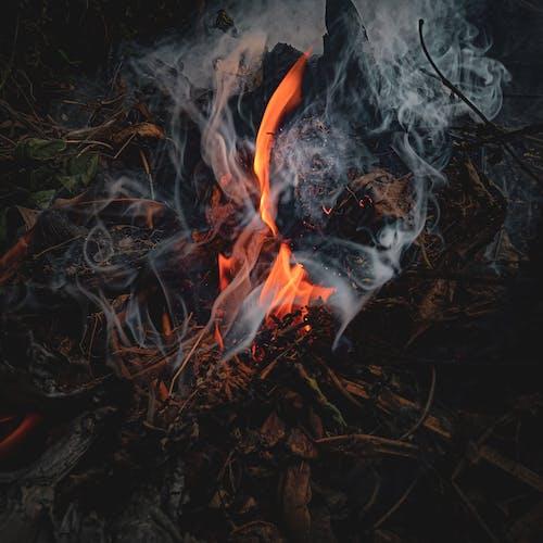 Smoke from a Bonfire