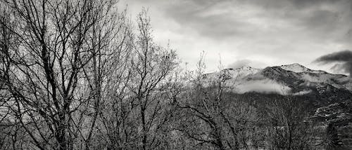 Free stock photo of black and white, clouds, mountains, snow