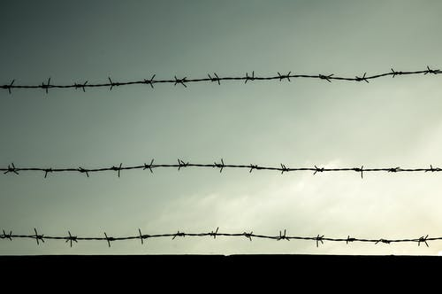 Free stock photo of barbwire, escape, freedom, jail