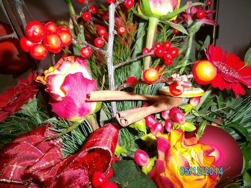 คลังภาพถ่ายฟรี ของ ช่อดอกไม้