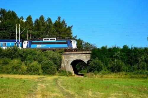 列車の無料の写真素材