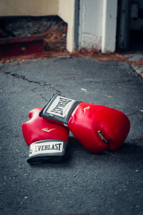 Red and Black Boxing Gloves