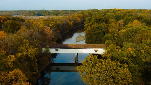 Drone view of aged bridge reflecting in river between bright trees growing in forests under cloudless sky