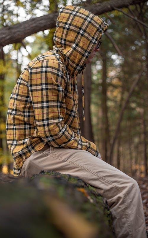 Photos gratuites de automne, couleurs automnales, couleurs d'automne, feuilles en automne