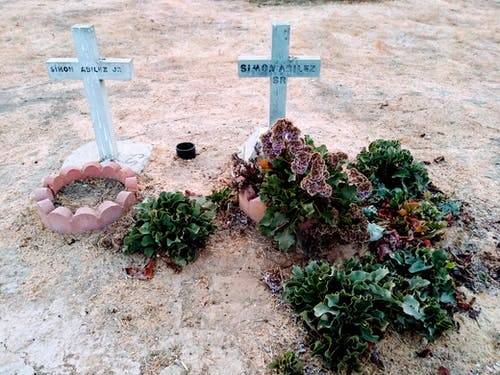 Free stock photo of cemetery, graves, markers