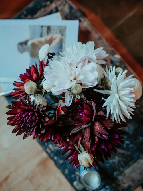Δωρεάν στοκ φωτογραφιών με αγάπη, αγροτικός, γαμήλια τελετή, διακόσμηση