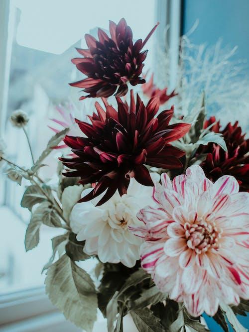 Bunch of vivid flowers in vase