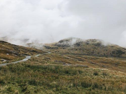 Brown Grass Field Under White Clouds