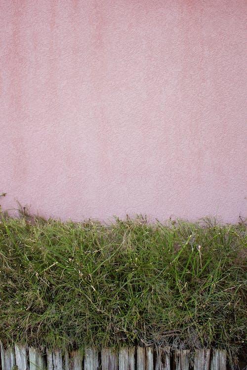 Безкоштовне стокове фото на тему «абстрактний, брудний, візерунок, ґрунт»