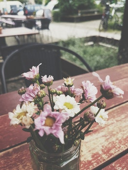 Free stock photo of wood, restaurant, flowers, petals