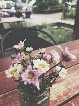 Kostenloses Stock Foto zu holz, restaurant, blumen, blütenblätter