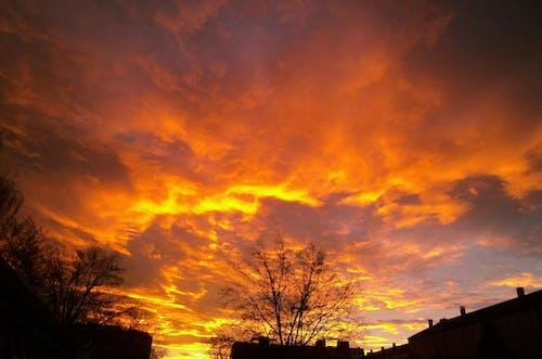 Fotos de stock gratuitas de amanecer