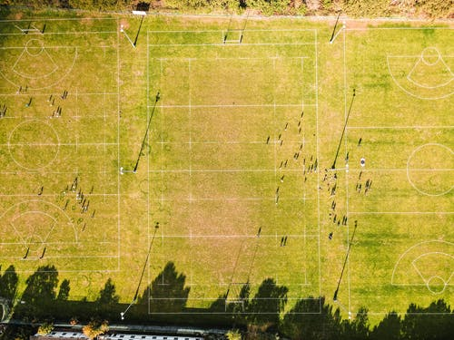 Green rugby pitches on sunny day