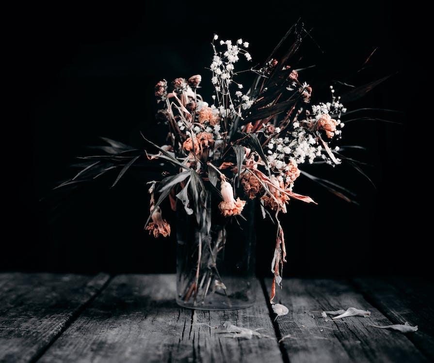 Gratis lagerfoto af ældet, arrangement, bleg