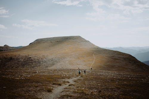 가파른, 간, 걷기, 경로의 무료 스톡 사진