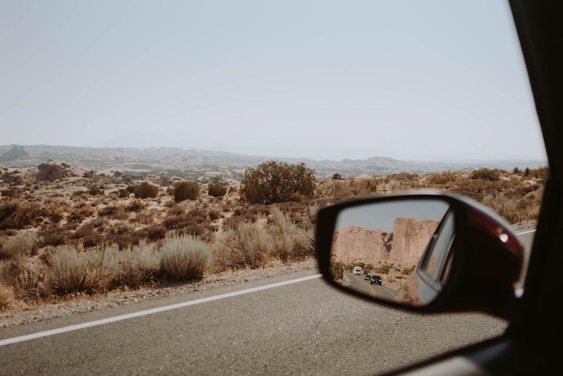 Asphalt road near savanna with bushes