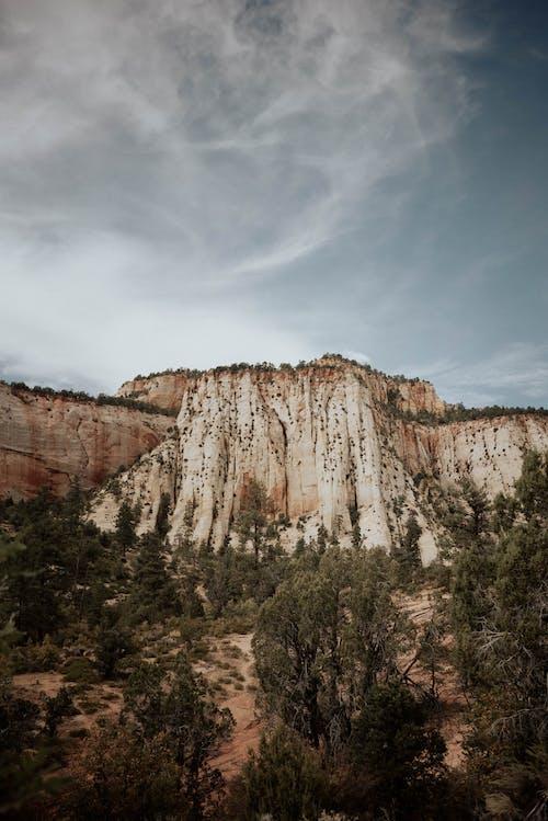 Photos gratuites de à couper le souffle, arbre, canyon, centrale