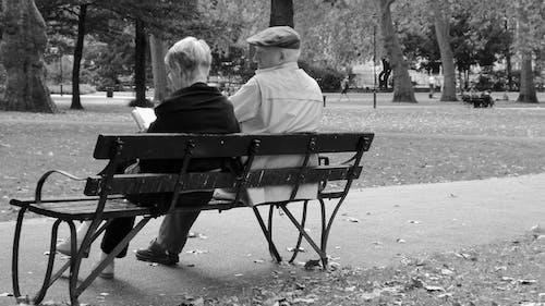 Základová fotografie zdarma na téma park life. londýnský park
