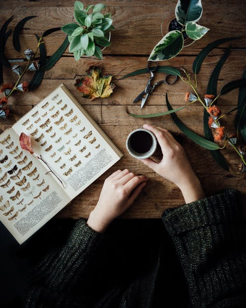 Crop woman with book and coffee