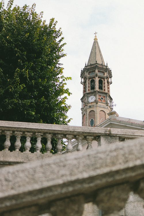 From below of authentic stone tower with ornamental details and clock located near green tree