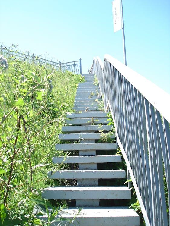 Free stock photo of лестница