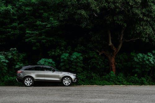 Darmowe zdjęcie z galerii z 35 mm, 50 mm, asfalt, auta