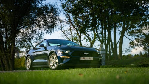 Blue Chevrolet Camaro on Green Grass Field