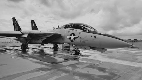 Fotos de stock gratuitas de aeronave, Armada, asfaltar