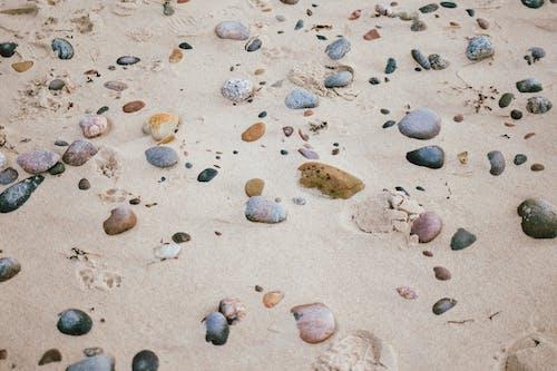 Kostenloses Stock Foto zu entspannung, ferien, meer, meeresküste