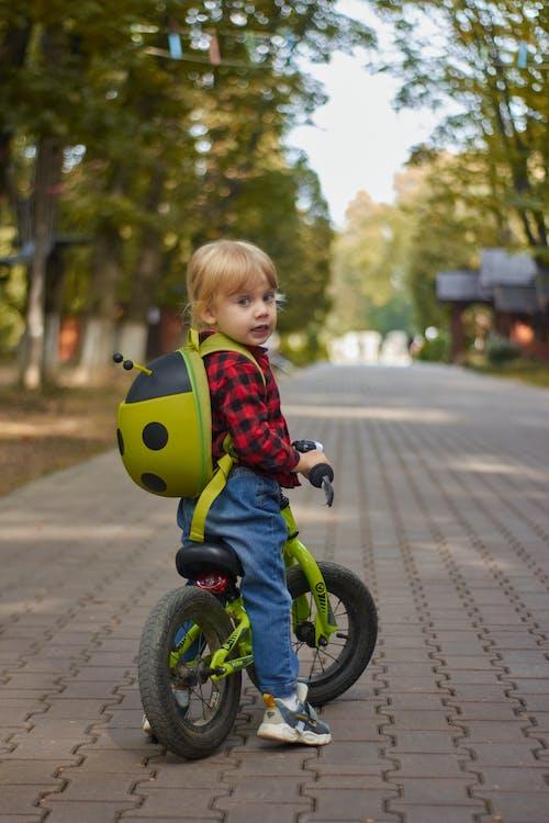 Kostnadsfri bild av aktiva, atmosfera de outono, äventyr, barn