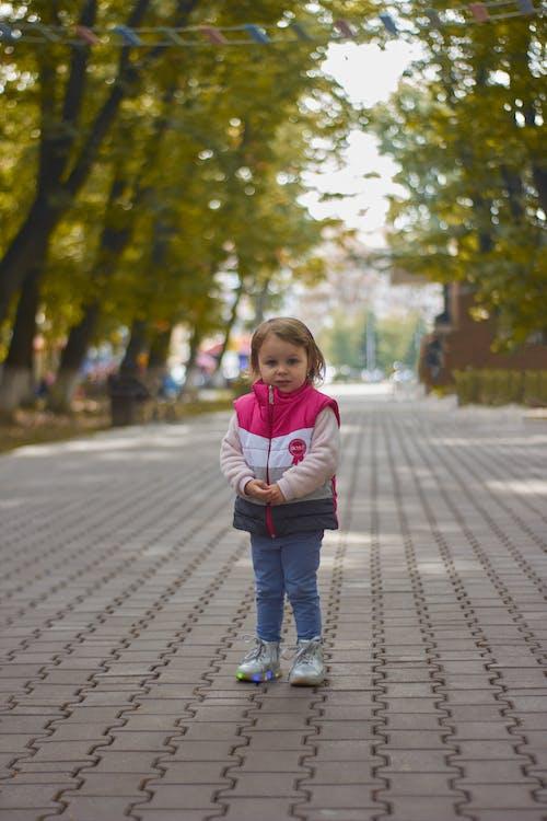Kostnadsfri bild av atmosfera de outono, äventyr, barn, blad