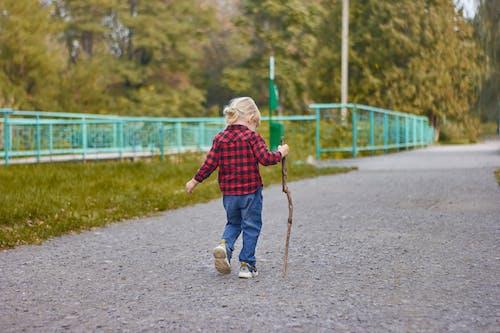 Immagine gratuita di adorabile, atmosfera de outono, attivo, autunno