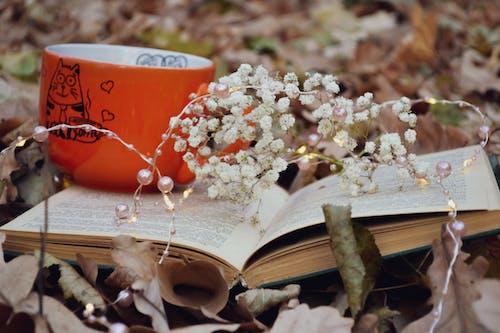 White Flowers And Orange Ceramic Mug On An Open Book