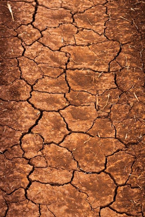 Kostenloses Stock Foto zu boden, dürr, dürre