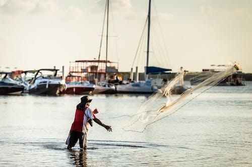 Photos gratuites de adulte, bateau, brésil, coucher de soleil