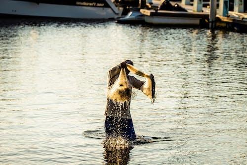 Photos gratuites de bateau, brésil, couleur, eau