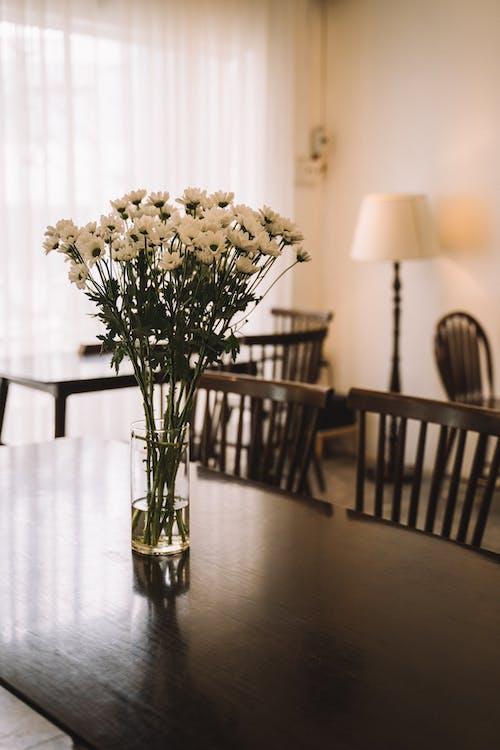 คลังภาพถ่ายฟรี ของ กลาง, การตกแต่งภายในที่เรียบง่าย, ช่อดอกไม้