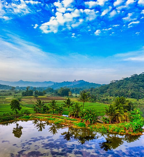 River near tropical trees and plantation with green mountains