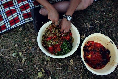 Imagine de stoc gratuită din alimente georgiene, mâncare, natură, picioare