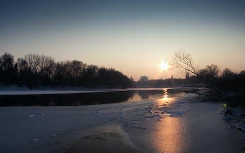 Free stock photo of frozen, sunset, trees