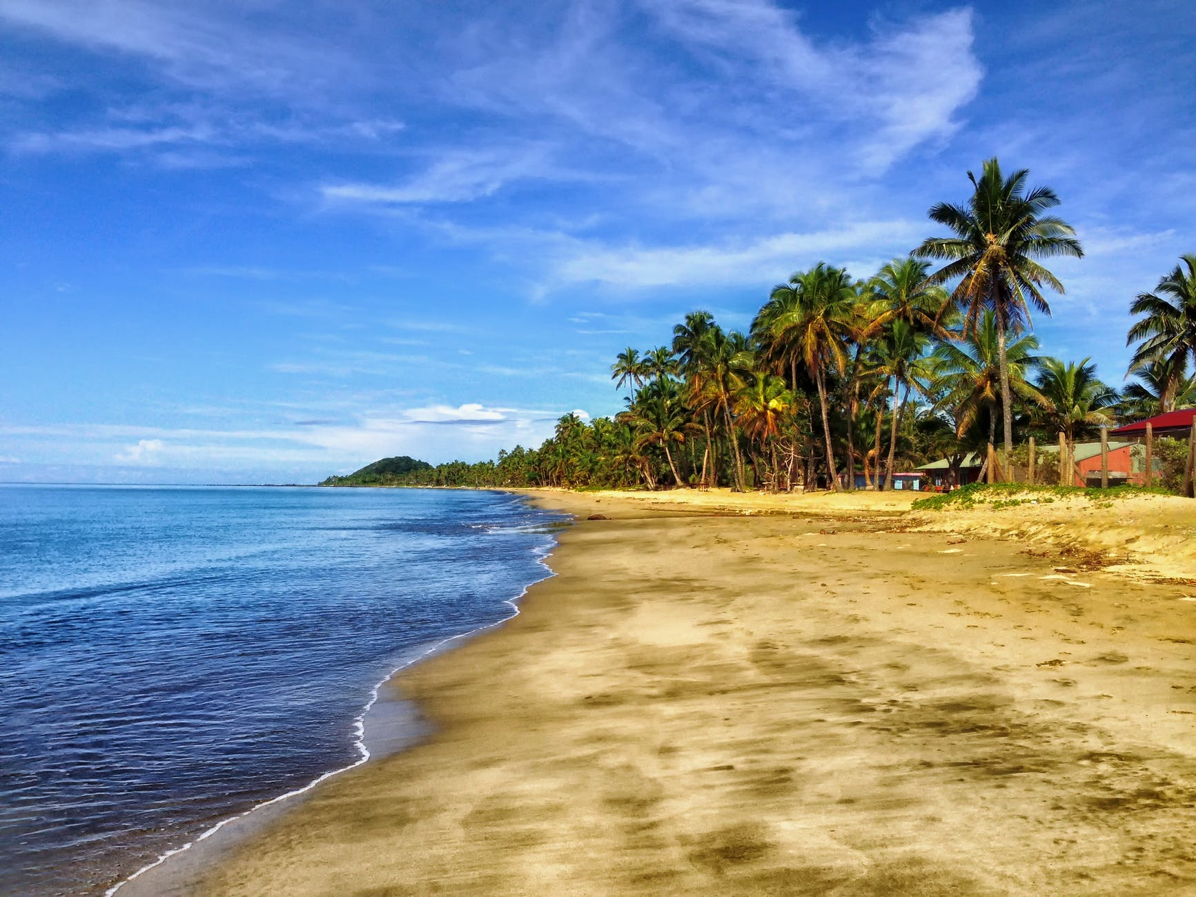 fiji-beach-sand-palm-trees-56005