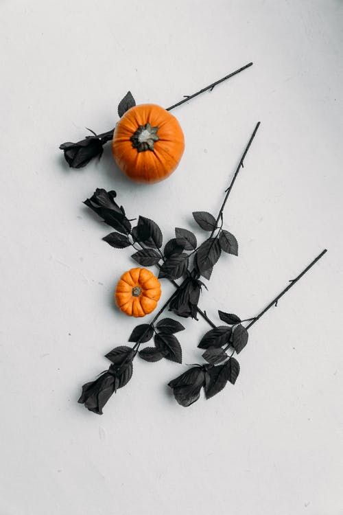 Orange Pumpkins And Black Roses on White Surface