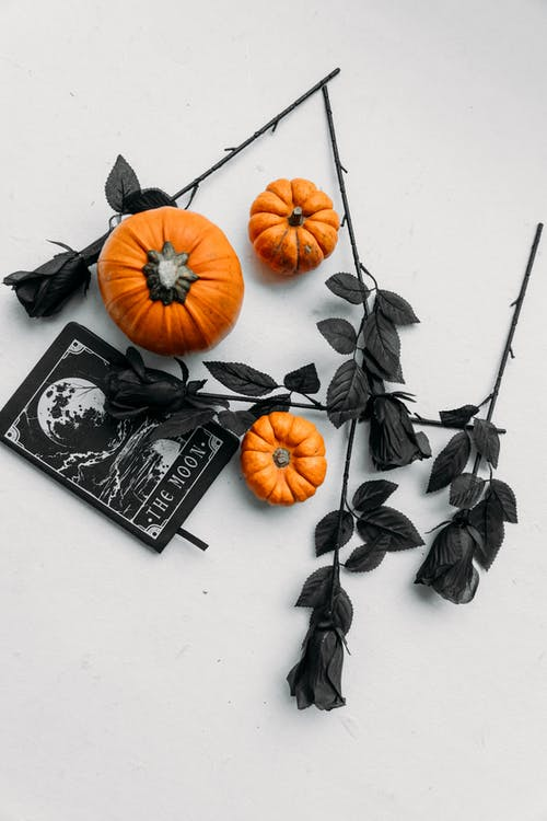 Black Roses And Pumpkins On White Surface