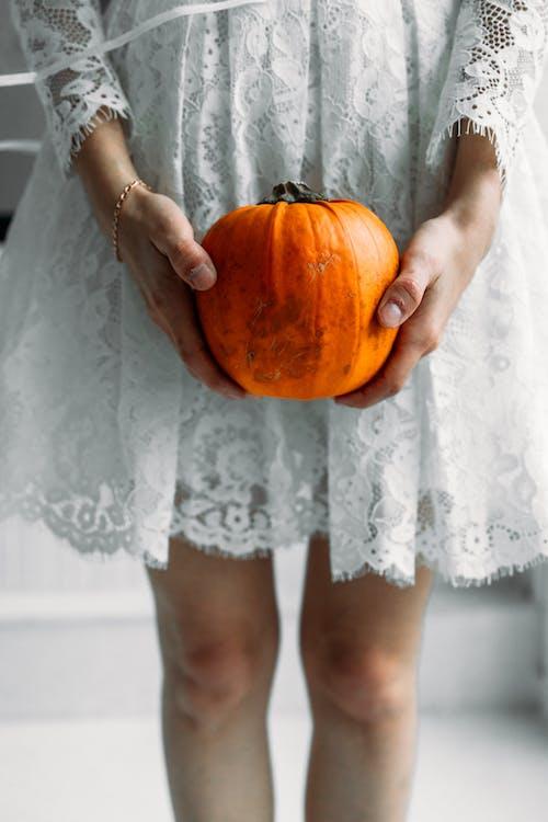 Gratis lagerfoto af blonder, græskar, Halloween