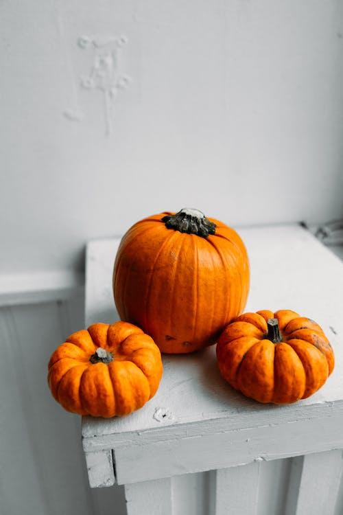 Fotografie bez autorských poplatků na téma Díkůvzdání, dřevo, dýně, halloween