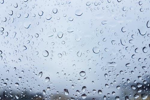 Free stock photo of autumn, background, bad weather